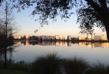 Walt Disney World Resorts / by On the Go in MCO