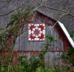 Barn Quilts / by Roxanne Jones
