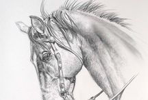 Drawings / by Kim Bender