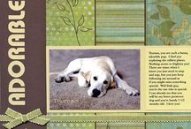 pets scrapbooking pages / by Heather Oakes