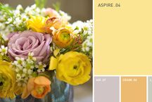Paint Inspiration | YOLO Colorhouse / by REstyleSOURCE