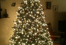 Christmas Trees I Love / by Susan Hanniford Crowley