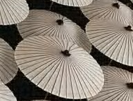 Umbrellas / by Lynn