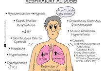 Respiratory / by Pamela Southern