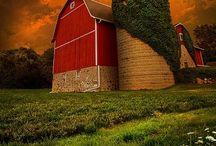 Barns / by Robbi Wilburn