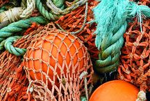 Orange & Turquoise / by Sharon Gervais