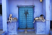 When a door closes . . . / by Mary Gordon Hanna