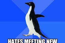 Socially Awkward Penguin / by John O'Brien