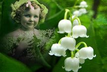 Lily-of-the-Valley / Lily-of-the-Valley was my mom's favorite flower / by Joke van Dijk