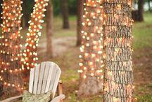 Wedding / by Sayward
