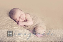 Photography~ Newborn / by Texas Charm Photography By Kimberly