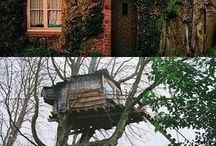 Now thats a tree house! / by Legends Direct