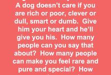 Definitely So True / by Erin Lovis