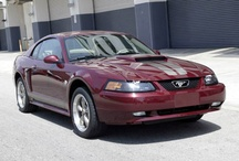 2004 Ford Mustangs / 2004 Ford Mustangs / by StangBangers