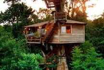 tree houses / by Kelly Rogers