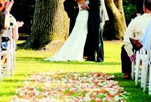 Pretty wedding//Baby ideas / by Kayla Jordan