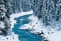 Winter / by Billie Jo Harville