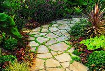 Gardening/ Outdoor / by Kristen Hoover