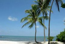 Key West / by Vicki Gables