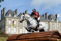 Test Events 2013 / Best pictures from the 3 tests events organized by the Organising Committee in August 2013 : Eventing, Endurance and Attelage / by Alltech FEI World Equestrian Games™ 2014 in Normandy.