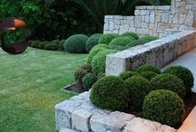 Garden Design / by Holo Cactus