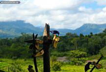 La Fortuna, Arenal in Costa Rica / La Fortuna in Costa Rica. #travel #wanderlust  / by Whispered Inspirations