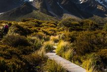 new zealand / the inspiration for my feb 2014 trip that all started here. / by Tanya Wang
