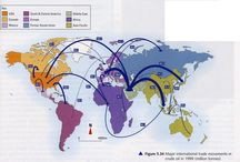 TradeFlows Infographic / by glo pro