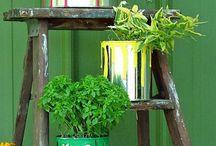 great garden idea / by Carly Hoffman