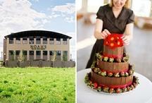 wedding-or-party-ideas / by Valentine Rosko