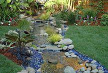 Gardens / by Nancy Gallagher