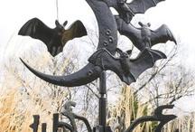 Bats / by Marilee Reinhart Davieau