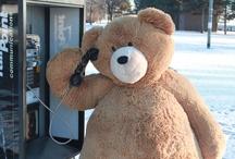Big Hunka Love Bear's Adventures / by Vermont Teddy Bear