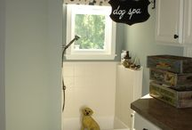 Dog Room / by Lesley Mason
