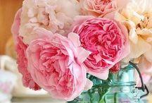 Flowers / by Linda Freytag