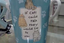 Cat Themed Stuff MeWow! / by paige =^..^=