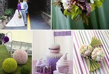 The Wedding  / by Kristi Pflug