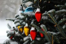 Christmas / All things Christmas that make me and my family sing, laugh,  dance and celebrate.  / by Jon Juan