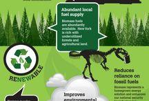 biomass research / by Adam Mills