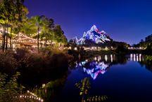 Disney World / by Steve Bell- Military Disney Tips