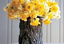 Tree Stump Crafts / by Theadora s