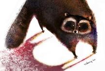 Raccoons / by Blue Eyed Night Owl
