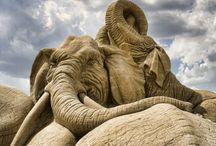 Sand Sculptures / Sand art. Sand skulturen. / by Anke Metzger