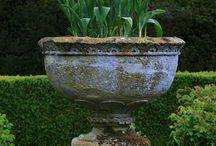 Garden / by Kraig Michels