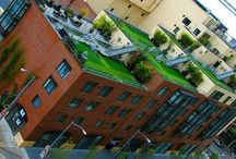 Rooftop gardens / by Martha Mundy