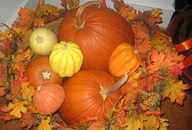 I Love Fall / by Cindy Stock