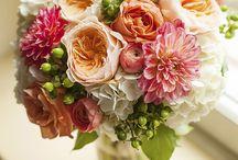 Wedding Flowers / by Kaitlin Steer