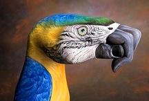 Animal Antics and Art / by Zippy Pins