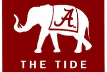 No words are spoken more classy than ROLL TIDE / by Kari Sobasky