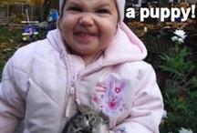 just plain funny pics / by Michaela La Rue